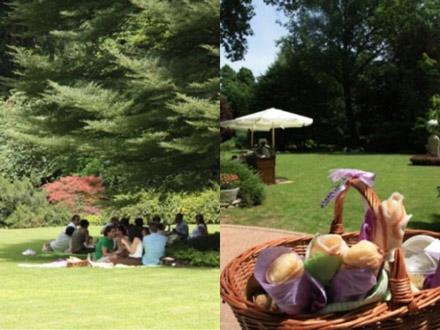 invilla picnic parma